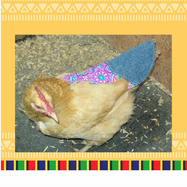 """6    /""""TURKEY/""""  or    CHICKEN SADDLE APRON HATCHING EGGS BACK PROTECTION  POULTRY"""