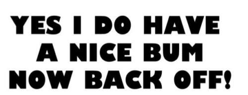 YES I DO HAVE A NICE BUM Funny Caravan Swift Bailey Novelty Vinyl Decal Sticker