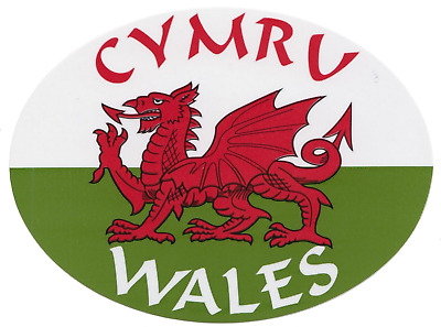 SKU5553 1 x Wales Welsh Flag Vinyl Stickers Decals Wall Car Van
