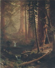 Albert Bierstadt Giant Redwood Trees of California Giclee Canvas Print Paintings