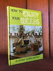 Foraging Cookbook Flowers Wild Foods HOW TO ENJOY YOUR WEEDS Survival