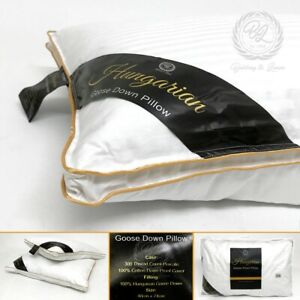 100 Hungarian Goose Down Pillows Luxury Hotel Quality