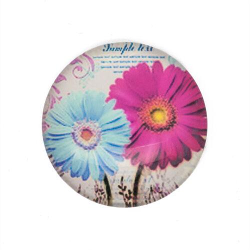 Azul Y Rosa Flor Diseño 30mm Redondo Cabujones
