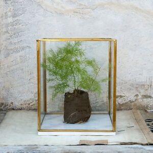 Large Marble Brass Glass Terrarium Planter Candle Holder Lantern