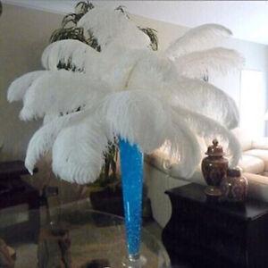 Wholesale-10-100pcs-premium-quality-white-ostrich-feathers-6-27-55-039-039-15-70-cm