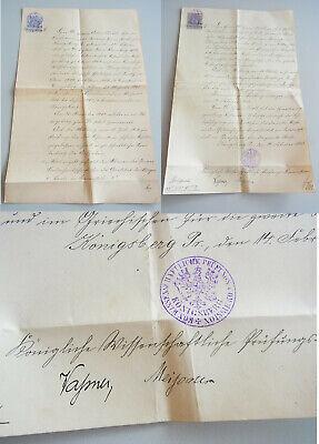 2 Uni-zeugnisse KÖnigsberg 1911-13 Für Erwin Kroll; Signaturen Ach, Rossbach Ua Ein Bereicherung Und Ein NäHrstoff FüR Die Leber Und Die Niere