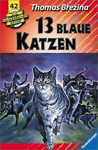 Die Knickerbocker-Bande, Bd.42, 13 blaue Katzen, ... | Buch | Zustand akzeptabel