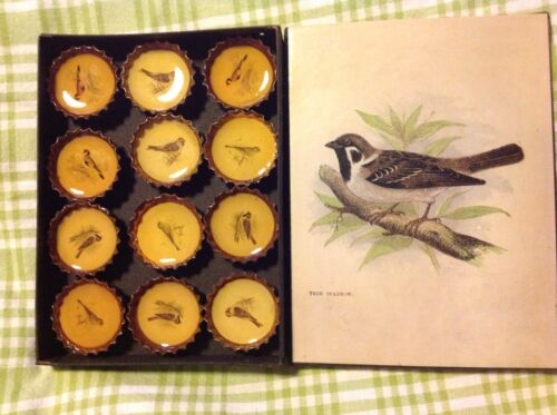 12 New Pottery Barn BIRD MAGNETS TREE SPARROW BOTTLE CAPS in TIN STORAGE BOX