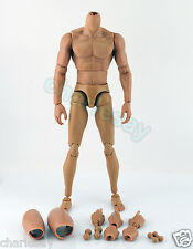 CUSTOM 1/6 Scale MUSCULAR MUSCLE FIGURE BODY For Hot Toys TTM 19 Narrow Shoulder