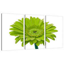 3 Panel Wall Art Lime Green Floral Canvas Pictures Living Room 3098