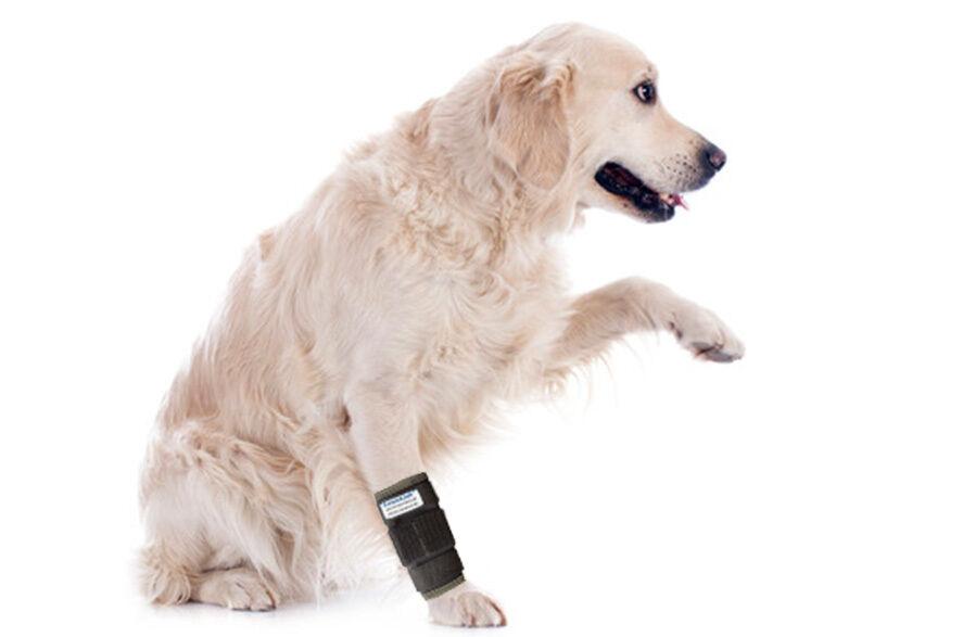 Nature Pet Medium Dog Bandage   Dog Carpal Joint Splint   dog front leg brace