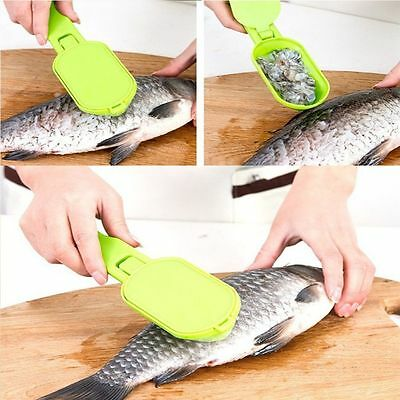 Tools New Practical Fish Scaler Clam Opener Scale Scraper Kitchen Accessories