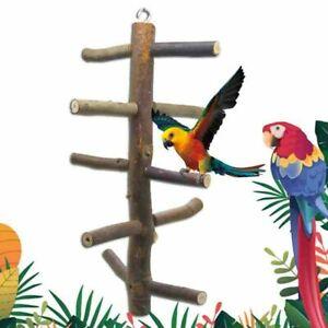 Papagei-Vogel-Rotation-Treppe-Staender-Spielen-Fitness-Holzern-Zweig-Halter-Neu