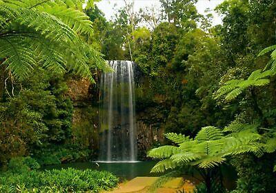 6 Teile Fototapeten Tapete Fototapete Wasserfall Dschungel L 300 x 210 cm W