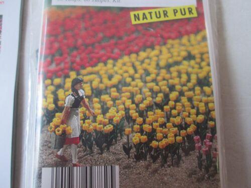 Busch 9782 tulipanes 60 trozo Ho