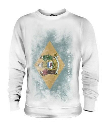 DELAWARE STATE FADED FLAG UNISEX SWEATER TOP DELAWAREAN SHIRT JERSEY GIFT