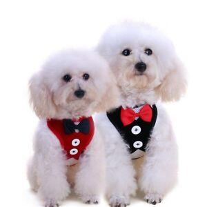 Dog Harness Vest Set Pet Suit Chest Back Rope Set Pet Supplies Cute
