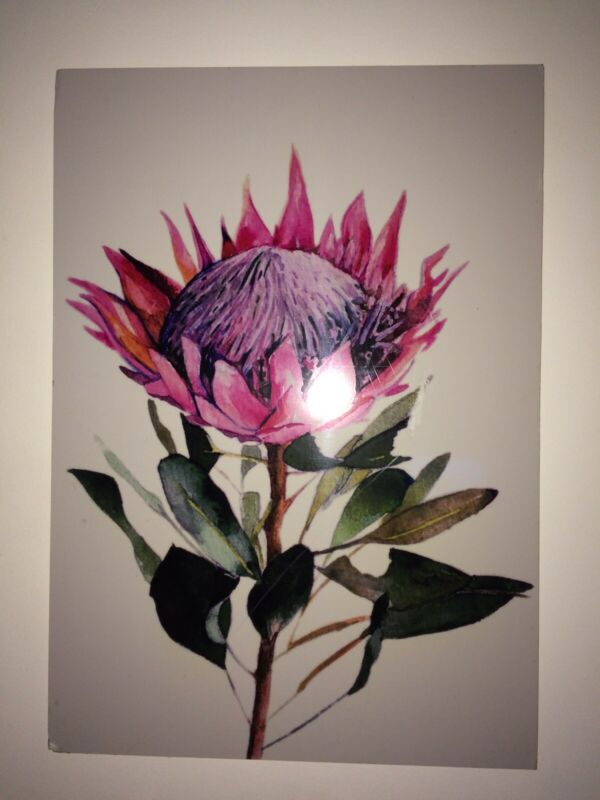 Protea canvas print and painted wooden Protea boards for sale