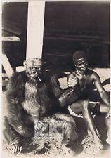 AFRIQUE Ethnographie Racisme Colonie Singe Gorille Brousse Chasse Photo 1930s