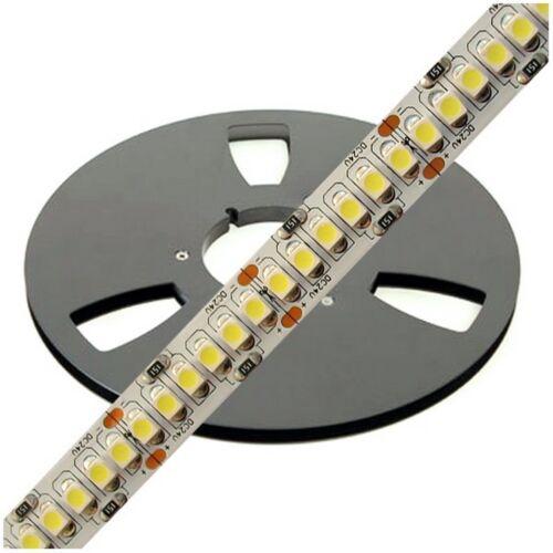 STRIP LED 3528 24V ALTA LUMINOSITA 240 LED//MT WARMWHITE 3000-3500K DA 30 A 250CM