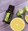 doTERRA-Sample-Size-oils-20-40-drops-choose-your-oil thumbnail 37