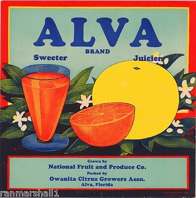 Alva Florida Alva Orange Grapefruit Citrus Fruit Crate Label Vintage Art Print