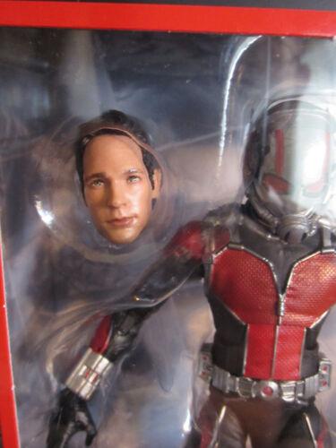 """Marvel Legends 6/"""" MCU Studios les dix premières années Ant-Man avec Paul Rudd Head NEW"""