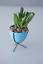 mini-bullet-planter-mid-century-modern-3-034-tall-blue-orange-black-or-white Indexbild 16
