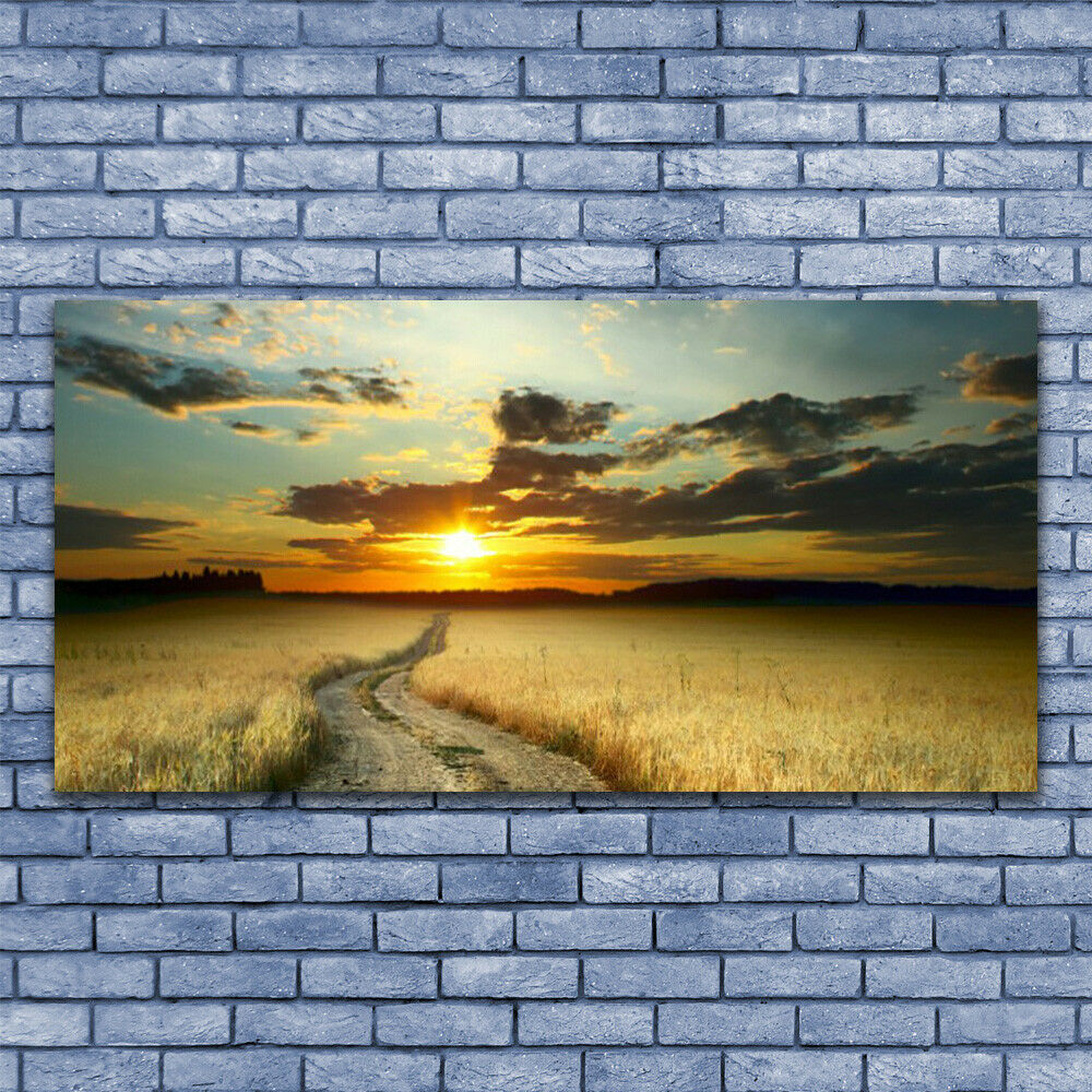 Acrylic print Wall art 140x70 Image Picture Way Meadow Landscape