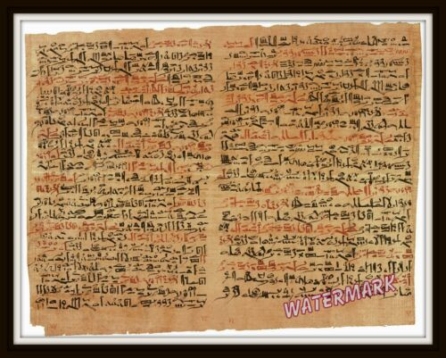Wall Art of Edwin Smith Egyptian Papyrus Surgical Document Year 1600 bc  11x14