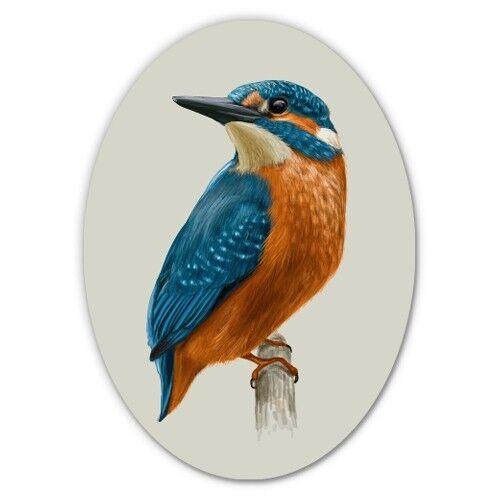 Kingfisher Voiture Ordinateur Portable Téléphone Vinyle Autocollant-sélectionnez la taille