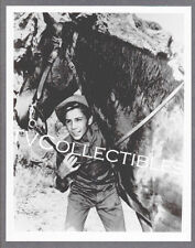 8x10 Photo~ TV's THE RIFLEMAN ~Johnny Crawford with horse