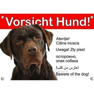 Dog Shield - Enseigne en métal Labrador Retriever, qualité 1a