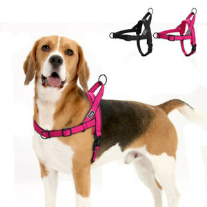 No Pull Adjustable Front Leading Pet Dog Harness Mesh Padded Nylon Quick Fit S-L