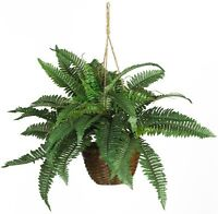 Nearly Natural 6599 Boston Fern Silk Hanging Basket, Green , New, Free Shipping on sale