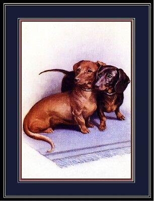 Dachshund Black Puppy Head Study Dog Puppy Dogs Puppies Vintage Poster Print