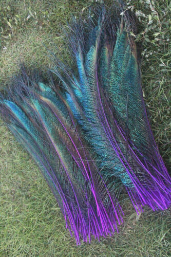 10-200pcs peacock feather sword 12-14 inches//30-35 cm left and right Symmetric