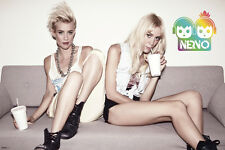 Nervo single 24x36 poster Electric Music Festival EDM PUNK HOT GIRLS HOUSE DANCE