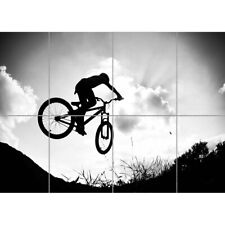 ART PRINT POSTER SPORT DOWNHILL MOUNTAIN BIKE SILHOUETTE BICYCLE SUNSET NOFL0440