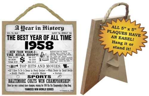 1958 A Year in History Birthday Fun Facts Sign Hang or Stand Great Gift NEW A19