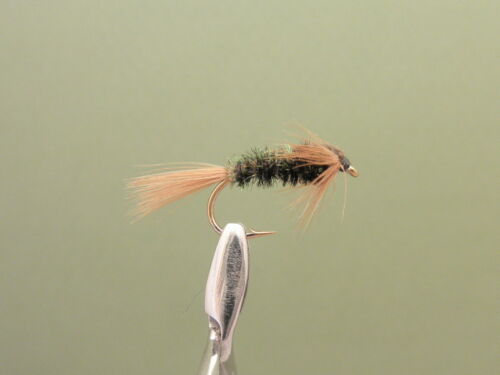 10//12//14 8 Pack of Tiger Nymph.Trout Fly Trout Flies Fly Fishing