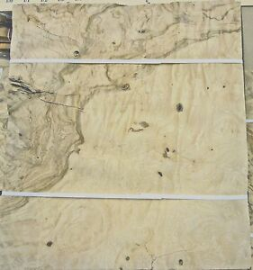 """Olive Ash Burl wood veneer 10/"""" x 17/"""" raw with no backing 1//42/"""" thickness A grade"""