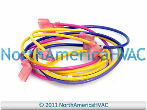 Goodman-Amana-Janitrol-Furnace-Blower-Wire-Wiring-Harness-0259F00024