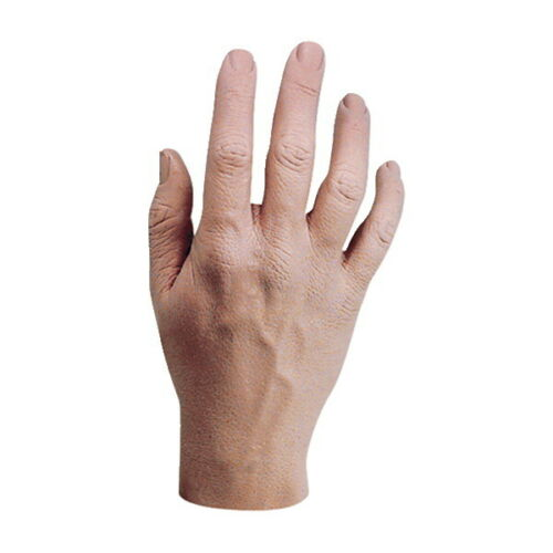 Handikin Authentically Detailed Life Sized Human Relaxed Hand