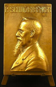 Medal-Paul-Schutzenberger-Chemist-Alsatian-Acetate-of-Cellulose-Albuminoids