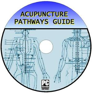 Lernen-Akupunktur-Pathways-Points-amp-Anatomie-Heil-Video-Guides-Ressource-Pc-DVD