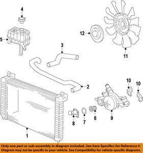 Image Is Loading GM OEM Radiator Coolant Lower Hose 84036271