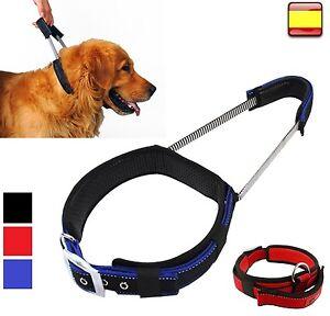 Collar para perro arnes TALLA XL de color rojo negro azul acolchado adiestrar