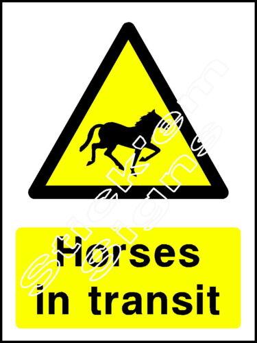 Horses in transit 140x100mm  COUN0004 Self adhesive vinyl