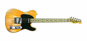 Image Is Loading Bruce Springs S 1950 Fender Esquire Greeting